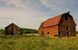 Abandoned barns in the country. Abandoned old barns surrounded by beautiful blue sky.  Decaying wooden structures show weathering from desertion Royalty Free Stock Photo