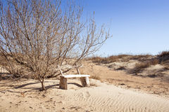 Abandoned bench Stock Image