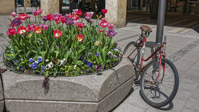 Abandoned bike parked near street flowerbed Stock Images