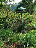Abandoned bird feeder in the garden Royalty Free Stock Images