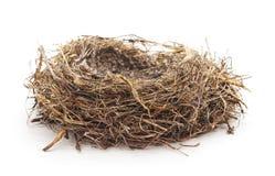 Abandoned bird nest stock image