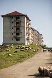 Abandoned blocks of flats Royalty Free Stock Images