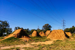 Abandoned BMX dirt jumps park Stock Photo