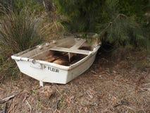 Abandoned Boat, Huon Valley, Tasmania Royalty Free Stock Image