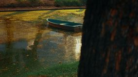 Abandoned boat among the river overgrown with duckweed. sunny summer day.  stock video