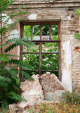 Abandoned brick house closeup. European abandoned house from brick closeup was overgrown with bushes and trees royalty free stock photography