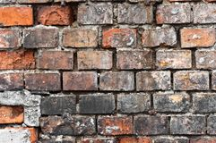 Abandoned brick wall Royalty Free Stock Photo