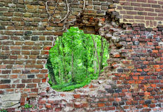 Abandoned brick wall with a hole Stock Photography