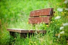 Abandoned brown bench in the wild grass Royalty Free Stock Images