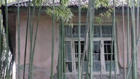 Abandoned Building in Bamboo stock video