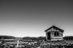 Bathhouse on the swamp. Abandoned building of a bathhouse at Dagi Sakhalin thermal source that looks like a real swampy wasteland Royalty Free Stock Photos