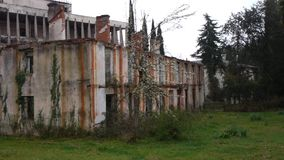 Abandoned Building in Garden stock footage