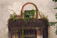 Abandoned building overgrown with balcony. Royalty Free Stock Image