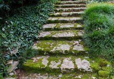 Abandoned building stairs. Ancient stone steps overgrown with moss Stock Photo