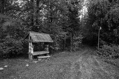 Abandoned buildings in the forest.In the black and white version.  Royalty Free Stock Photo
