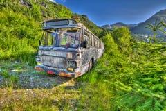 Abandoned bussar Arkivbild