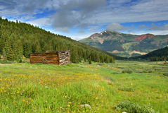 Abandoned Cabin Stock Image