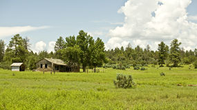 Free Abandoned Cabin Stock Images - 6484464