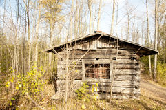 Abandoned cabin in the fall Royalty Free Stock Image