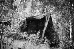 Abandoned Cabin Stock Photography