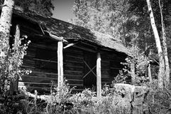 Abandoned Cabin Royalty Free Stock Image