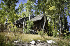 Abandoned Cabin Stock Image