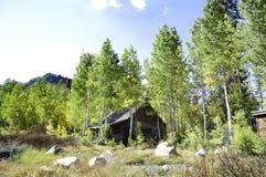 Abandoned Cabin Stock Photos