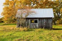Abandoned cabin Royalty Free Stock Photo