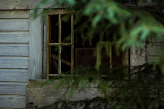Abandoned cabin in the woods window Royalty Free Stock Photography