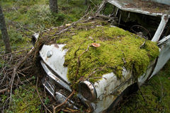 Abandoned car. Old russian car in forest Royalty Free Stock Photos
