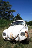Abandoned car. An abandoned white volkswagen beetle Royalty Free Stock Images