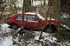 Abandoned car behing trees Royalty Free Stock Photos