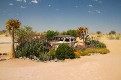 Adandoned car in Namibia royalty free stock photos