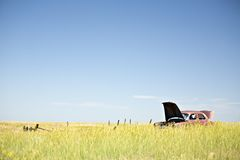 Abandoned car in field Royalty Free Stock Photo