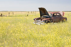 Abandoned car in field Stock Image