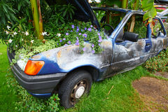 Abandoned car and flowers Royalty Free Stock Photos