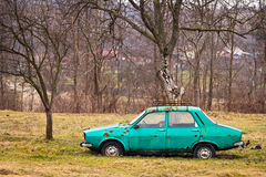 Abandoned car in the garden Stock Image