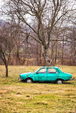 Abandoned car in the garden Royalty Free Stock Photos