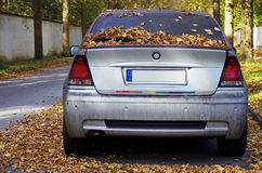Abandoned car. On the street covered by autumn leaves royalty free stock image