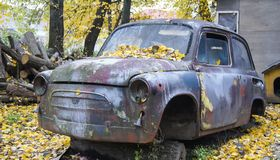 Abandoned car of the yellow, autumn rain forest Stock Image