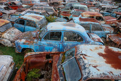 Abandoned cars at car cemetery. Several abandoned cars at car cemetery in New Zealand Stock Photos