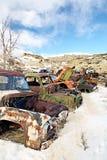 Abandoned cars in junkyard royalty free stock photos