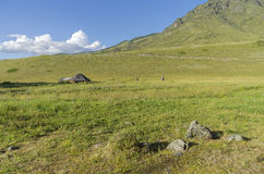 Abandoned cattle-ranch. Altai Mountains, Russia. Sunny summer day Stock Images