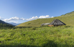 Abandoned cattle-ranch. Altai Mountains, Russia. Sunny summer day Stock Photo