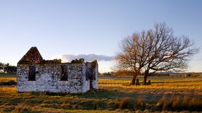 Abandoned church. Ruins of an old church with tombstones under a tree Stock Image