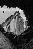 Abandoned church. Bird flying over the ruins of an abandoned church. Collapsed brick walls and ceilings in black and white Stock Photography