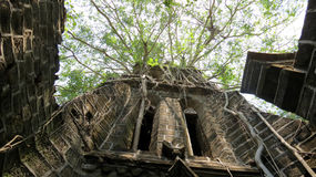 Abandoned church. Low angle view of an abandoned church with vegetation growth, Ross Island, Port Blair, Andaman and Nicobar Islands, India, Asia Royalty Free Stock Images