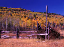 Abandoned Corral. With fall colors stock image