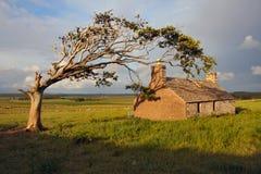 Free Abandoned Croft House Stock Photos - 5511083