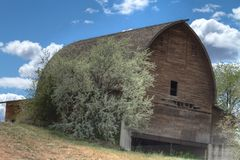 Abandoned Dilapidated Wooden Barn on a Hill in Washington Stock Photos